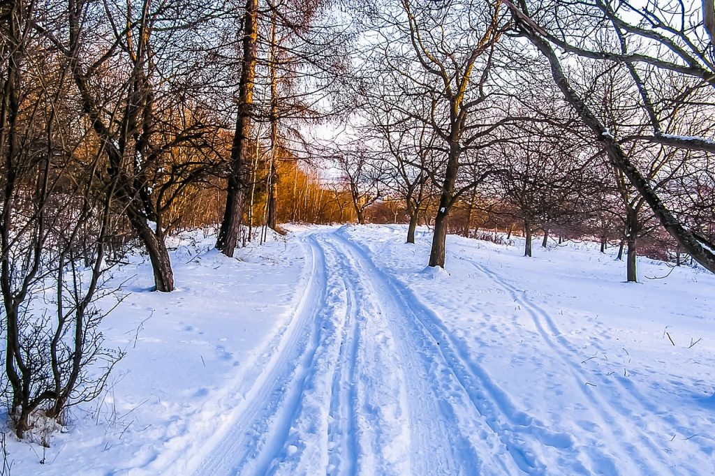 Explore your Area - Do your Homework -Tagtiv8's Top Tips For The Festive Season